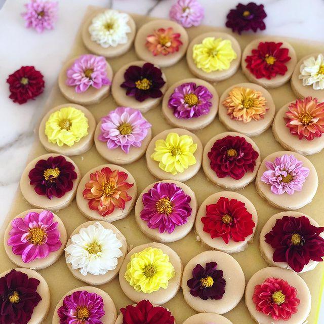 Galletas decoradas con margaritas de colores; Crea deliciosa repostería con flores