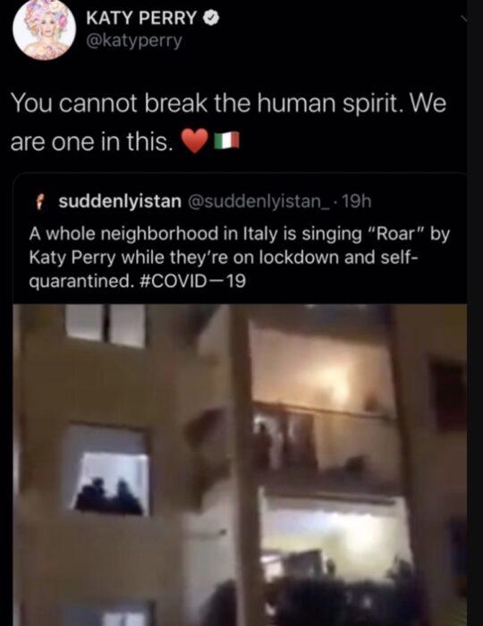 Comentario en twitter de Katy Perry sobre un video de su canción Roar