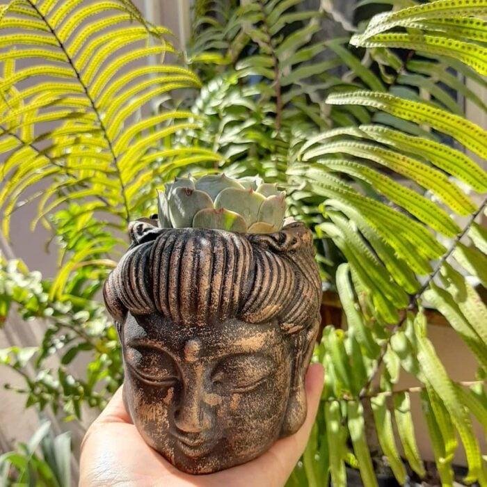 Maceta en forma de cabeza de Buda, con color negro con dorado