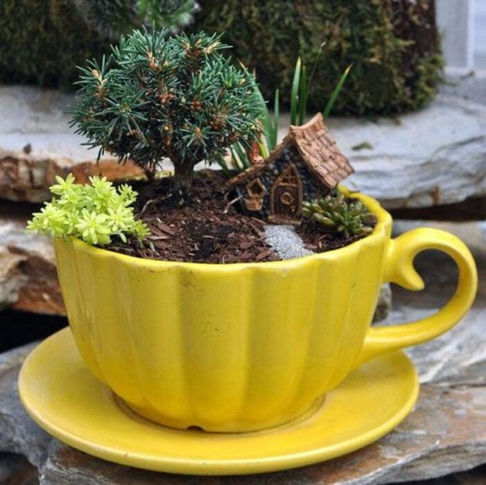 Mi jardín en taza de color amarillo con varias plantitas en el y una casita de madera