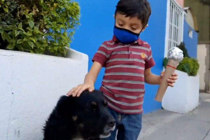 Santiago Fabila, niño haciendo reportaje sobre perros callejeros; Niño hace reportaje de perritos callejeros y su mensaje de amor se vuelve viral