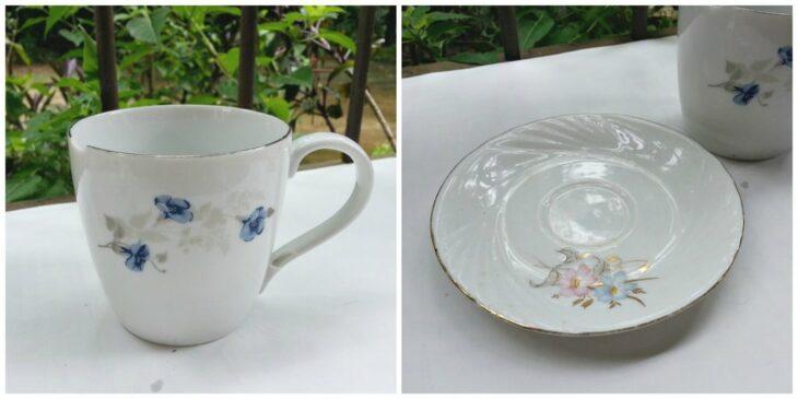 Paso 1 para crear un mini jardín en una taza de té