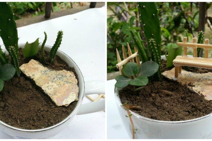 Paso 7 para crear un mini jardín en una taza de té