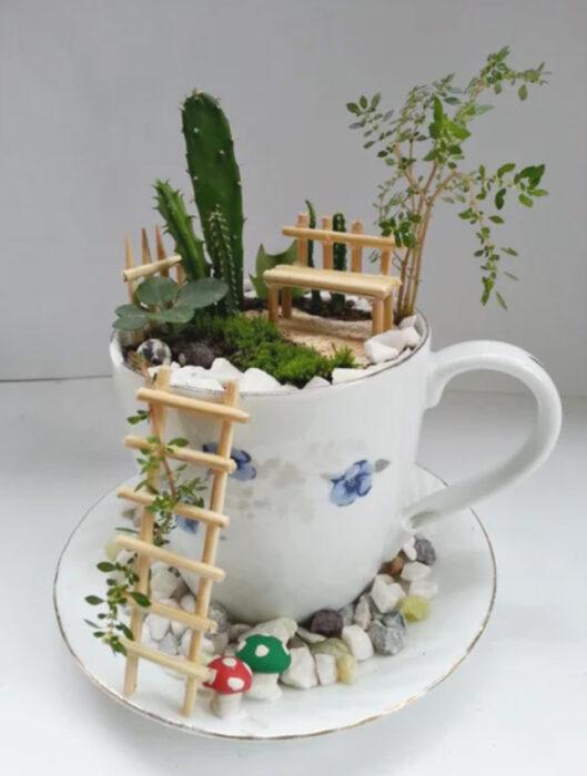 Paso 8 para crear un mini jardín en una taza de té
