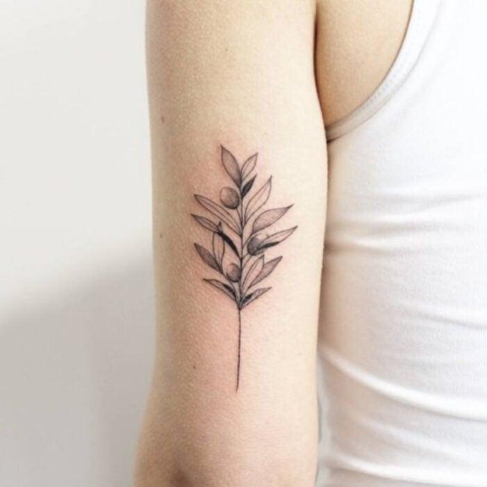 Tatuaje de la rama un olivo en la parte exterior del brazo