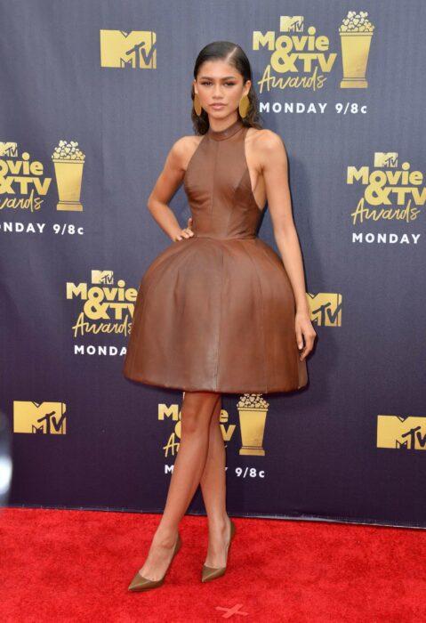 Zendaya wearing a brown dress puffed up at the skirt