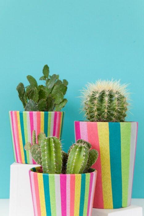 Maceta decorada con papel de colores; Ideas para crear tus propias macetas