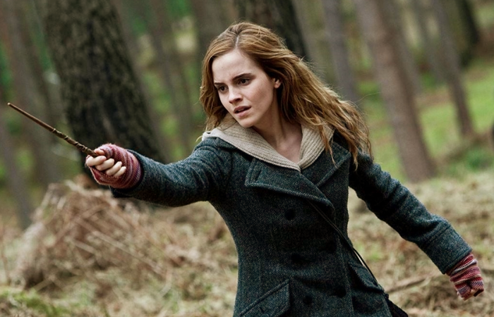 Hermione Granger de Harry Potter