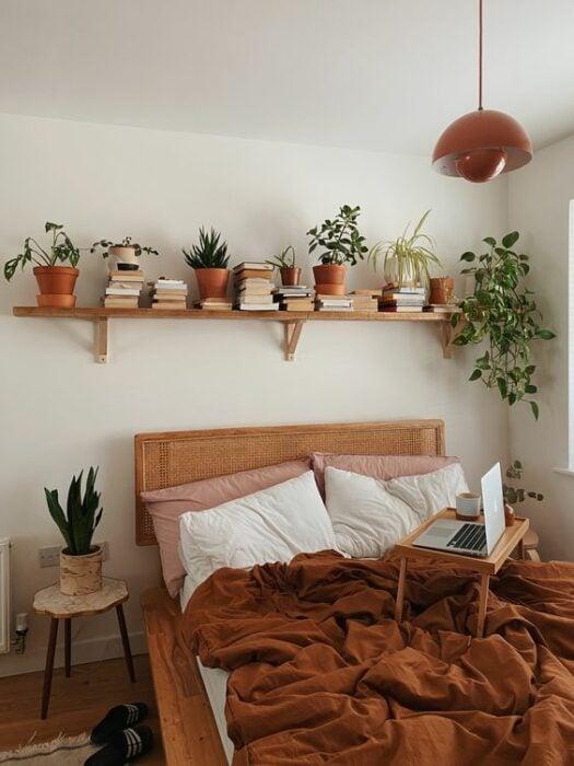plantas decorativas en una repisa ;13 Ideas para decorar tu depa con tantas plantas como desees