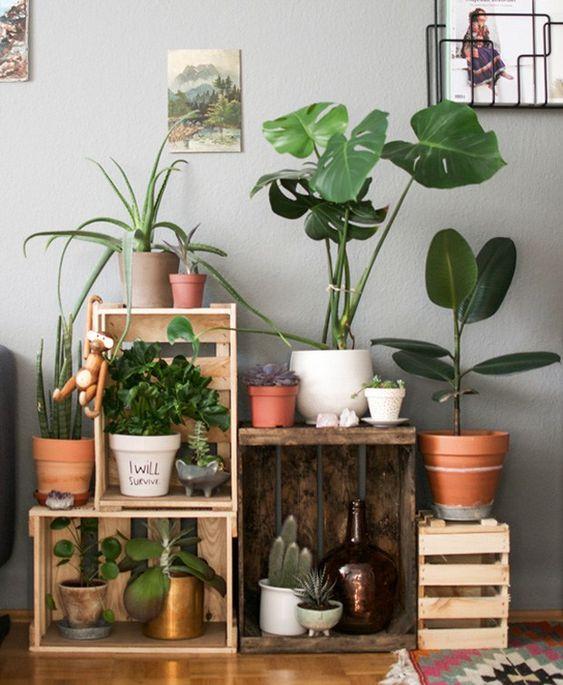plantas decorativas sobre rejas ;13 Ideas para decorar tu depa con tantas plantas como desees