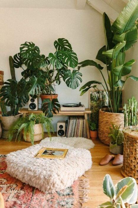 plantas decorativas en una sala de estar ;13 Ideas para decorar tu depa con tantas plantas como desees