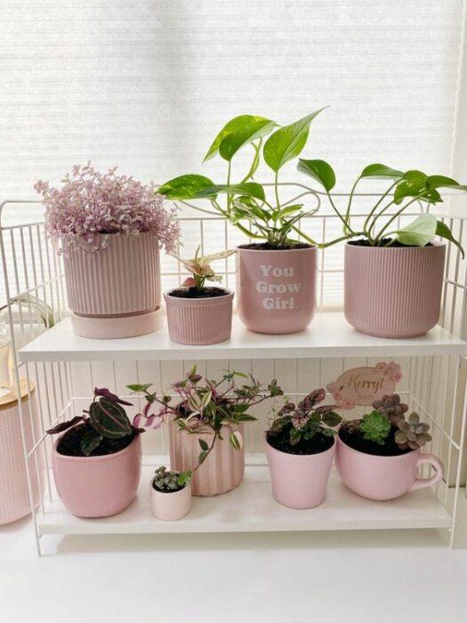 Maceta en tonos rosa pastel ;14 Macetas aesthetic para que tus plantas se ven bien chulas