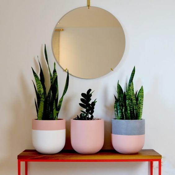 Macetas bicolor ;14 Macetas aesthetic para que tus plantas se ven bien chulas