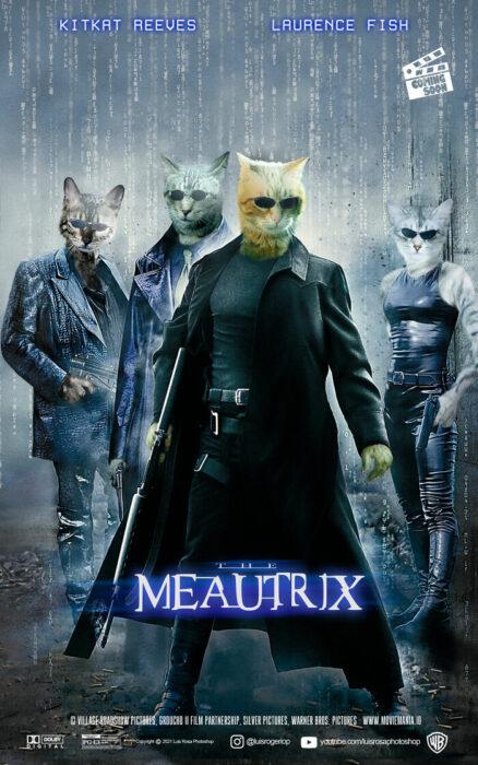 Matrix ;Artista remplaza actores con mininos en posters de películas famosas