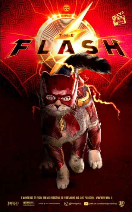Flash ;Artista remplaza actores con mininos en posters de películas famosas