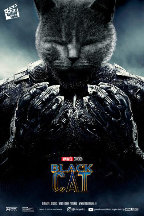 Black Panther ;Artista remplaza actores con mininos en posters de películas famosas