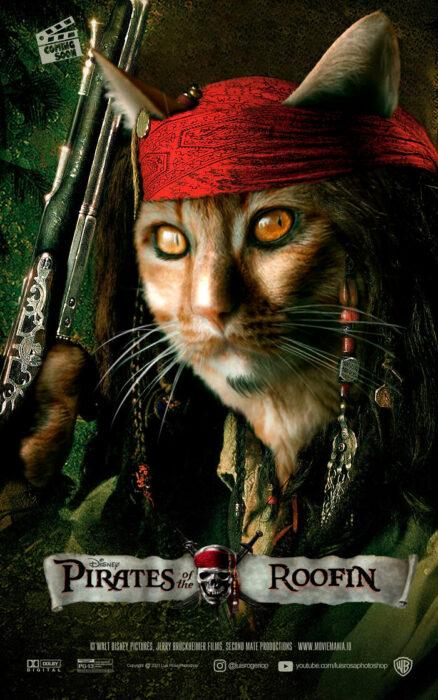 Piratas del Caribe ;Artista remplaza actores con mininos en posters de películas famosas