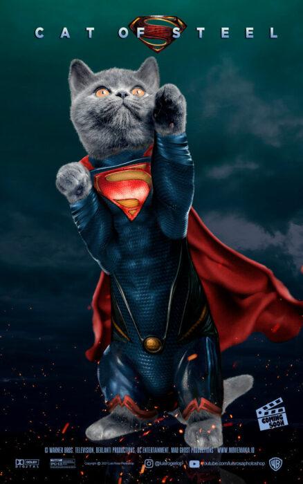 Superman ;Artista remplaza actores con mininos en posters de películas famosas