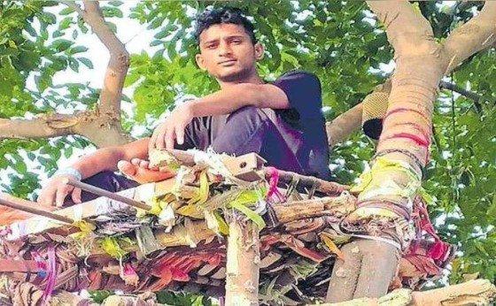 Chico sobre un árbol;  Joven se aísla 11 días en un árbol para con contagiar de covid-19 a su familia