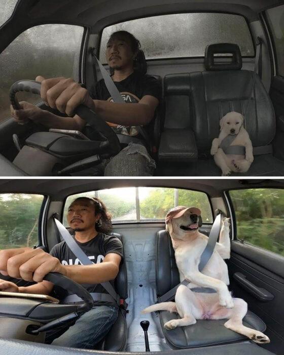 Antes y después de un hombre junto a su perrito
