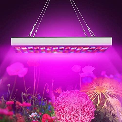 Lámpara para jardín con efecto invernadero
