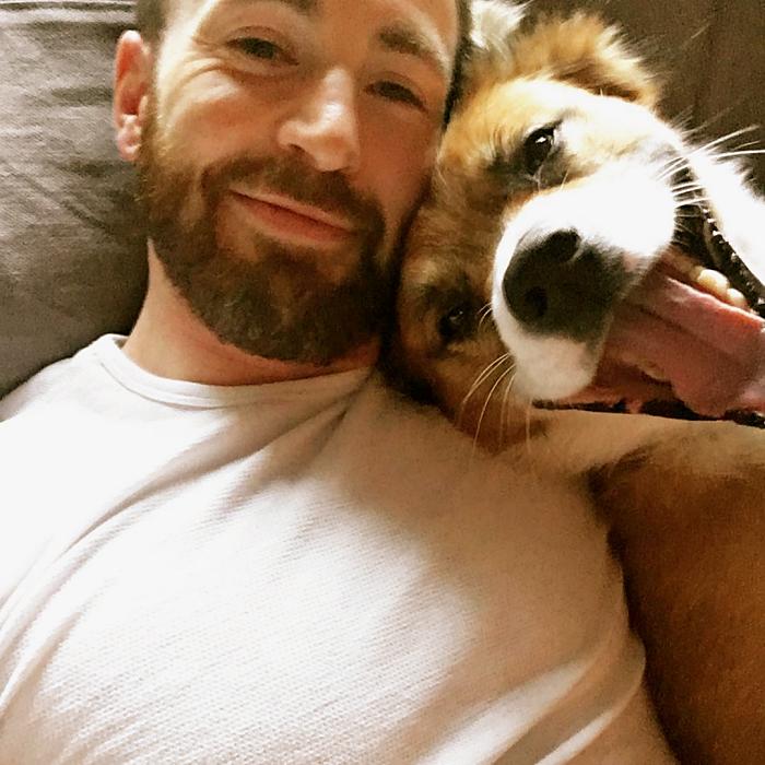 Chris Evans y su perrito Dodger