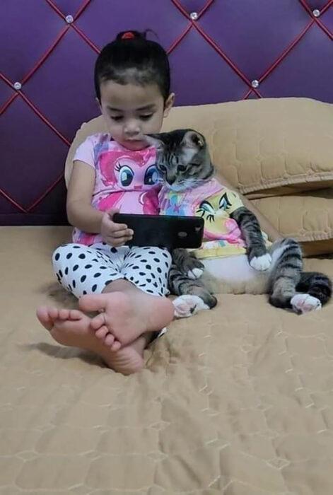 Niña y su gato viendo videos en el móvil ;18 Animalitos que te alegrarán la vida con su existencia