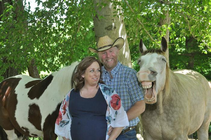 Caballo riendo en plena sesión de fotos ;Caballito interrumpe sesión de maternidad y su sonrisa hace reír a todo internet
