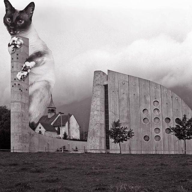 Gatito sobre un edificio ;Cuenta de Instagram combina arquitectura con gatitos y el resultado te hará ronronear