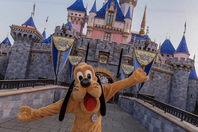 perro pluto en Disneyland
