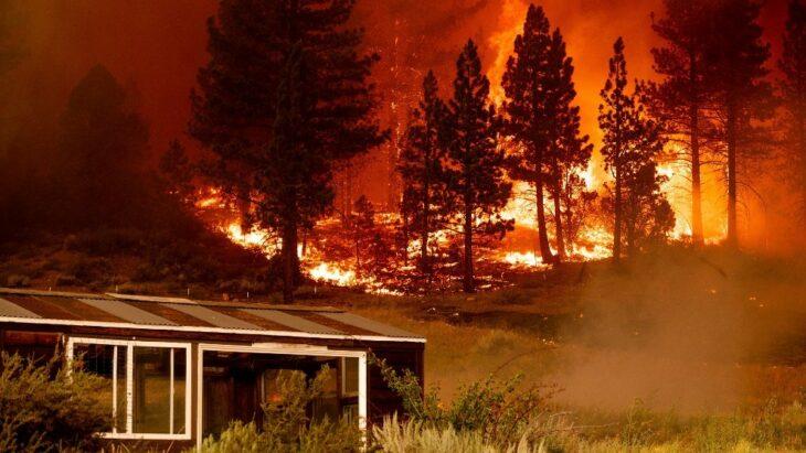Papá arriesga su vida en un incendio para salvar a sus gemelas (1)
