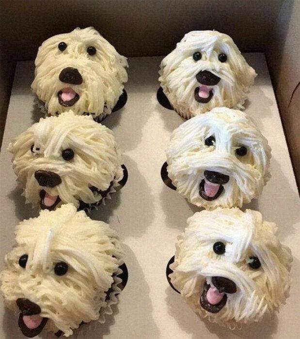 cupcakes de perros; Estas fotos de comida perfecta te harán romper la dieta