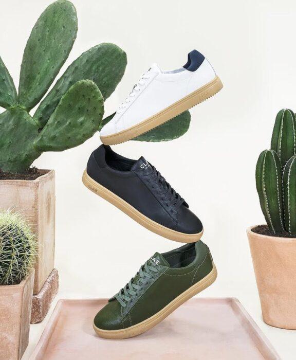 Tenis con tela de nopal; Joven creó las primeras zapatillas veganas y ecológicas fabricadas con Cactus