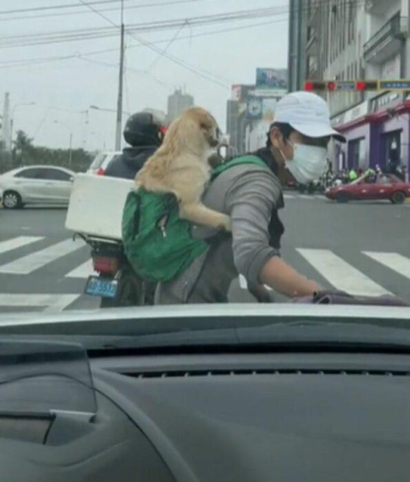 Joven trabaja en la calle limpiando vidrios con su cachorro en la espalda