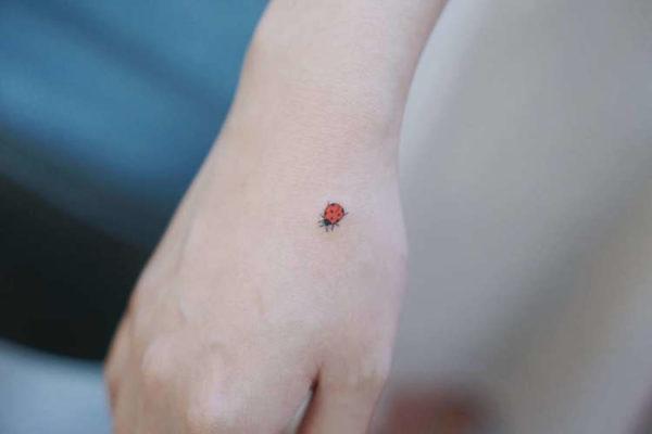 Catarina ;15 Hermosos insectos que sí querrás llevar sobre tu piel