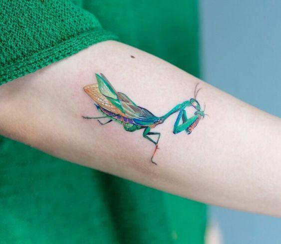 Mantis religiosa ;15 Hermosos insectos que sí querrás llevar sobre tu piel