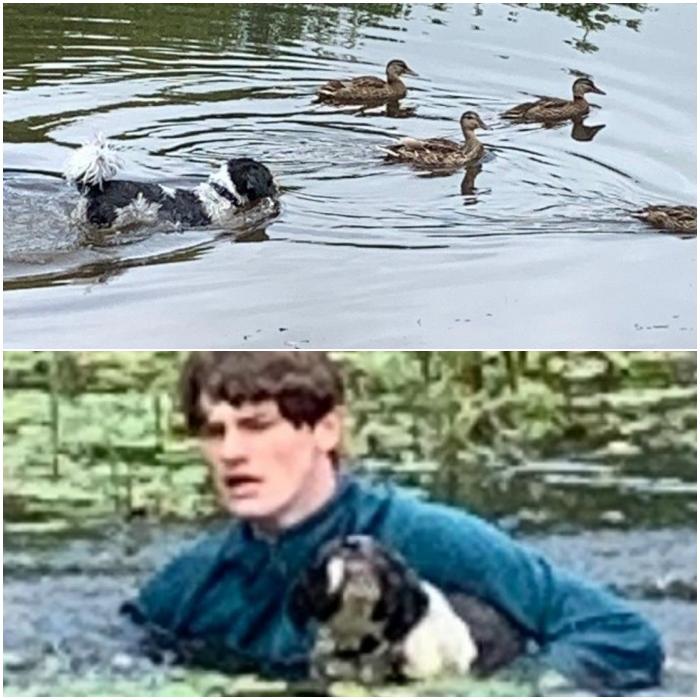 Connor Telfer, joven que salvó perrito