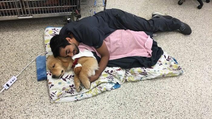 Veterinario durmiendo en el piso ;20 Mascotas que se mostraron amorosamente agradecidos con sus veterinarios