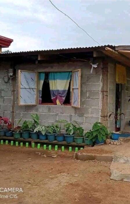 Fachada de una casa decorada con plantas