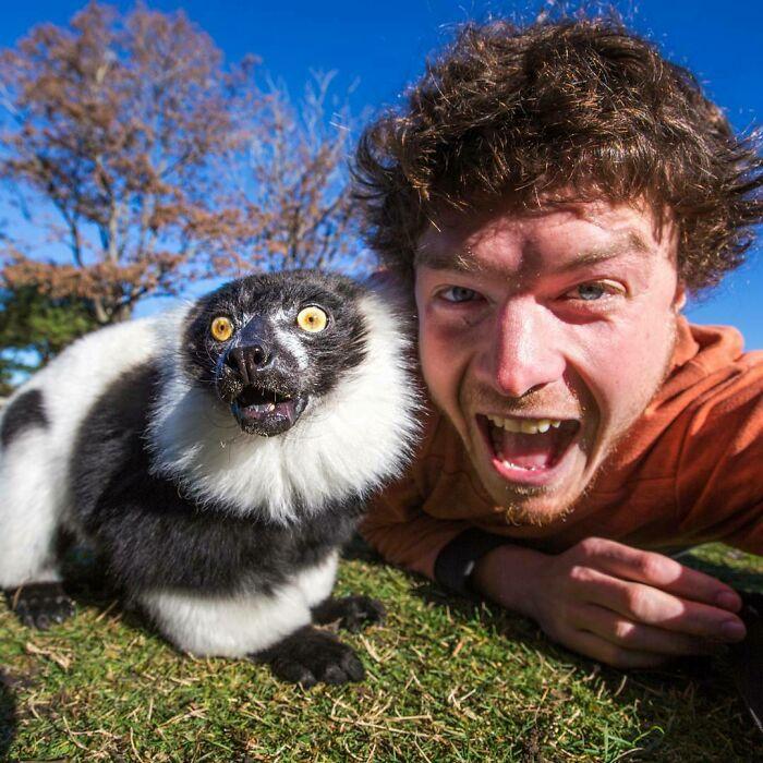 Junto a un lémur ;Allan Dixon; hombre se hace amigo de cualquier animal que encuentra en su camino