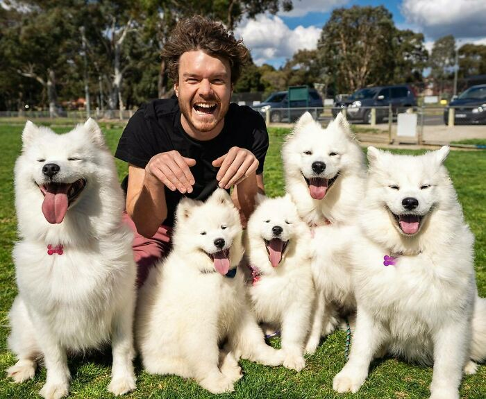 Manada de perros ;Allan Dixon; hombre se hace amigo de cualquier animal que encuentra en su camino