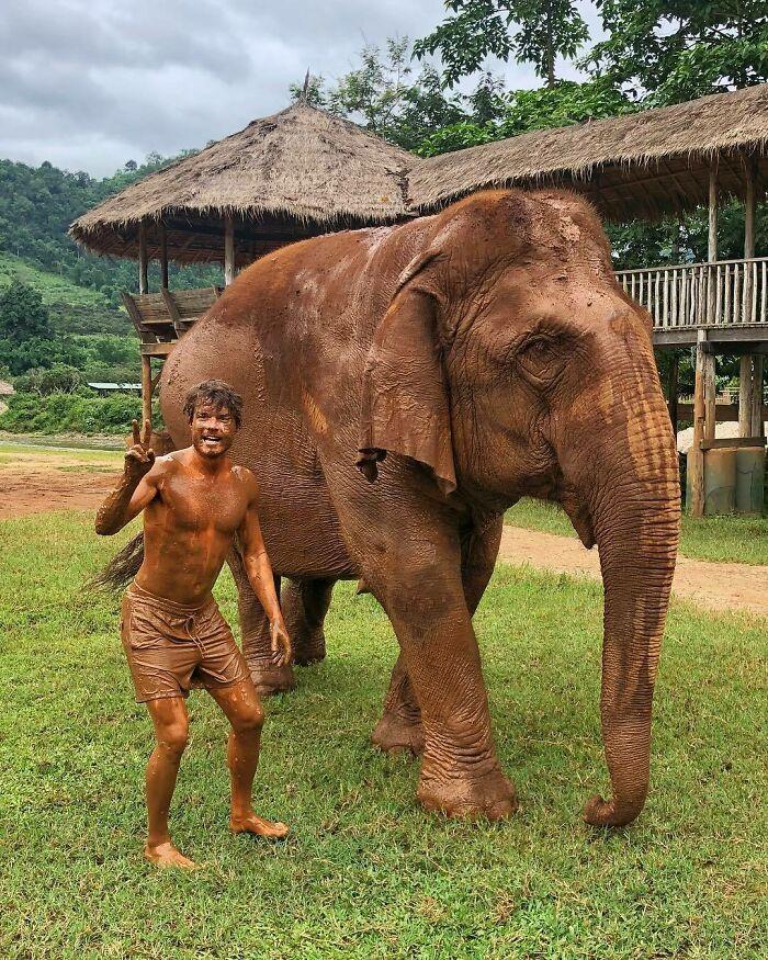 Elefante ;Allan Dixon; hombre se hace amigo de cualquier animal que encuentra en su camino