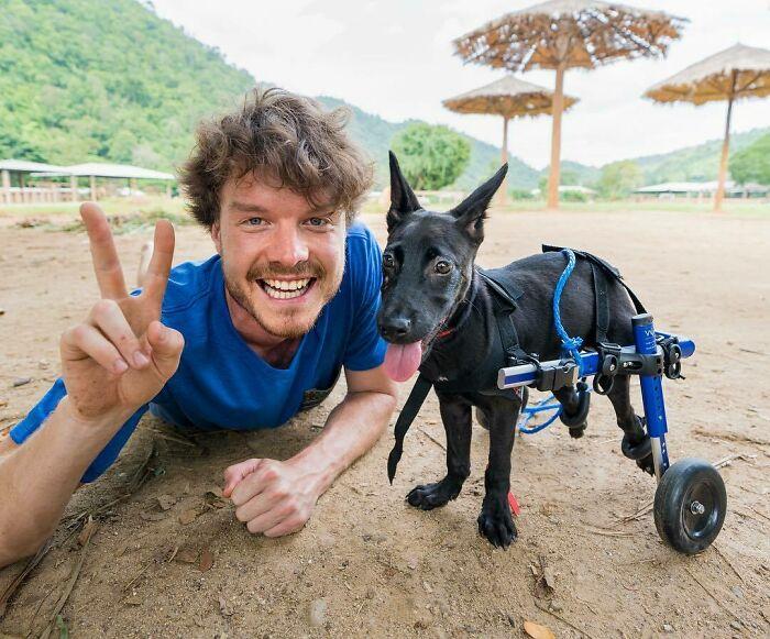 Perro con silla de ruedas ;Allan Dixon; hombre se hace amigo de cualquier animal que encuentra en su camino
