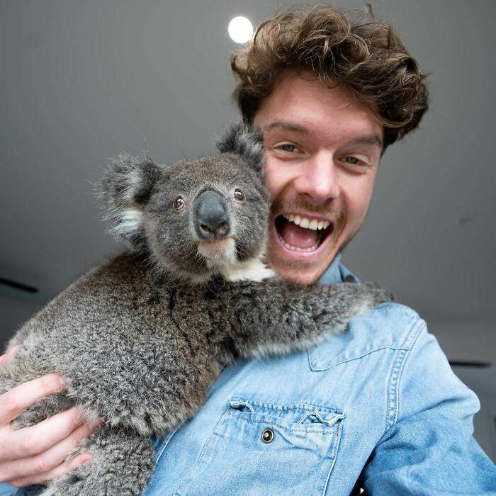 Koala ;Allan Dixon; hombre se hace amigo de cualquier animal que encuentra en su camino