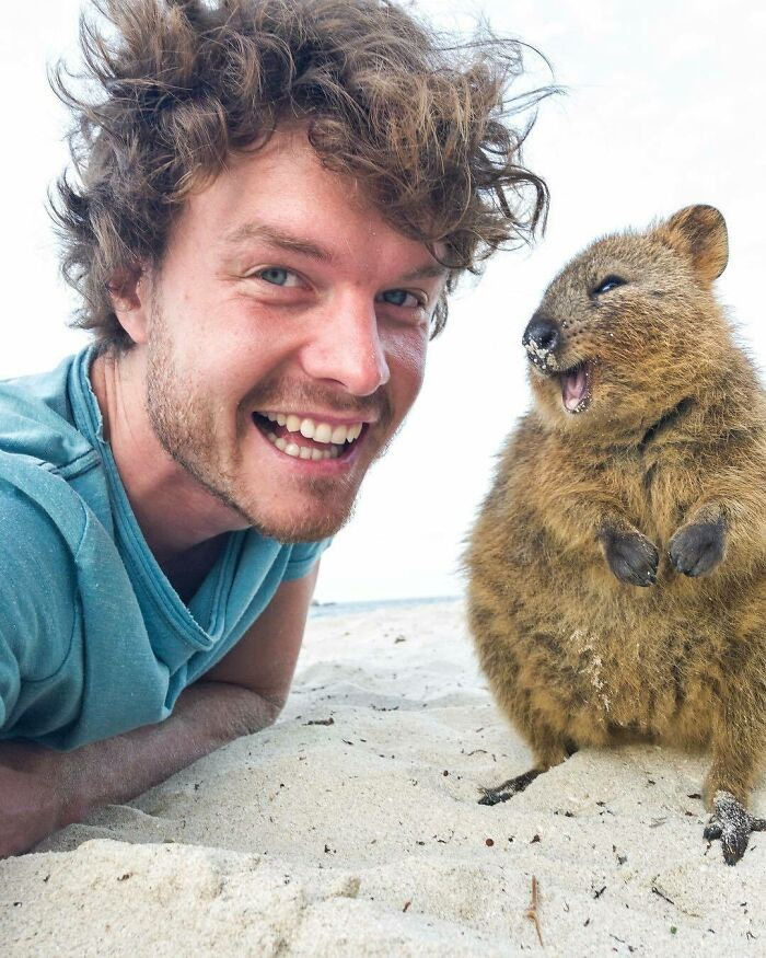 Animal sonriendo ;Allan Dixon; hombre se hace amigo de cualquier animal que encuentra en su camino
