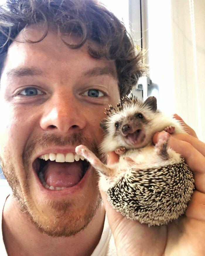 Puercoespín ;Allan Dixon; hombre se hace amigo de cualquier animal que encuentra en su camino