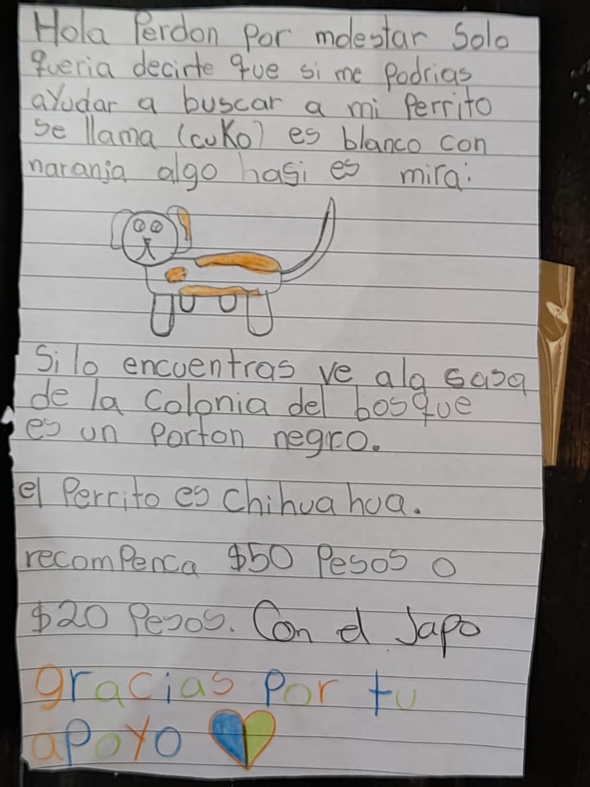 Carta niña buscando perro; Niña que buscaba a su perrito con un dibujo hecho a mano logra encontrarlo
