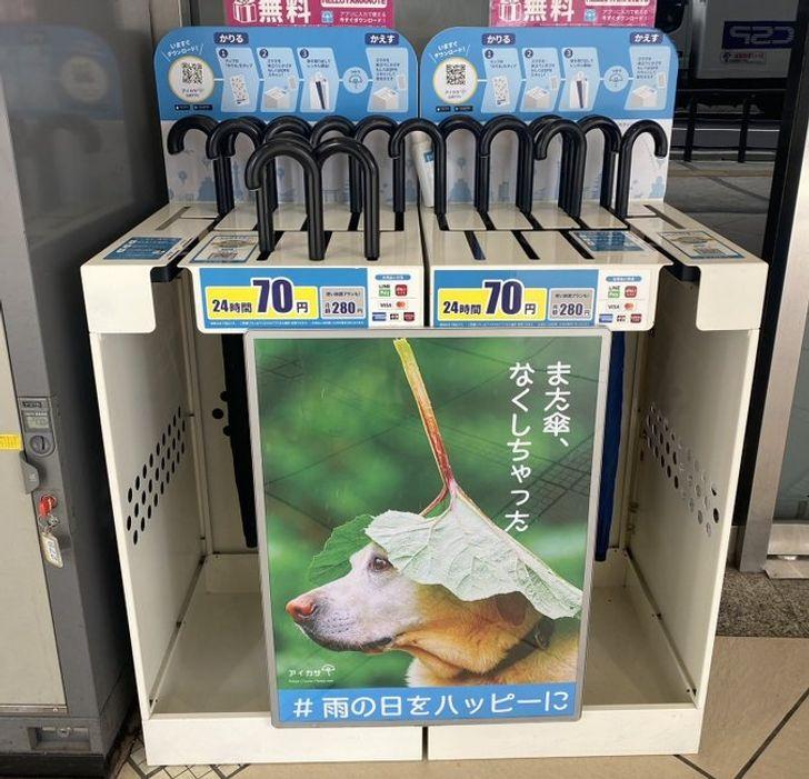 paraguas; 15 Fotos que demuestran que Japón es el país más kawaii del mundo