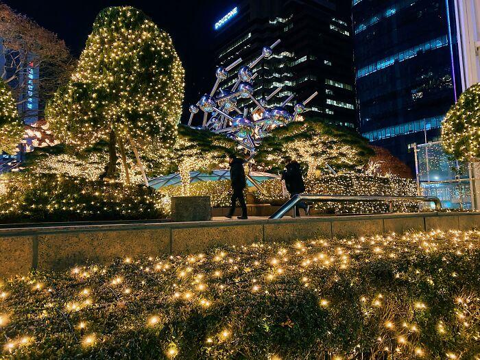 paseo bajo las luces; Corea es de otro mundo y estas fotos lo prueban