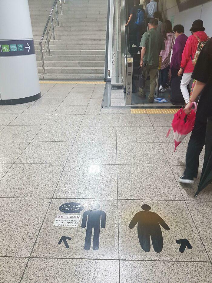escaleras eléctricas; Corea es de otro mundo y estas fotos lo prueban